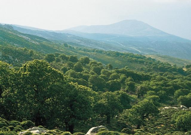 Южная Эвия